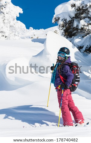 Active winter holidays, skiing and snowboarding - stock photo