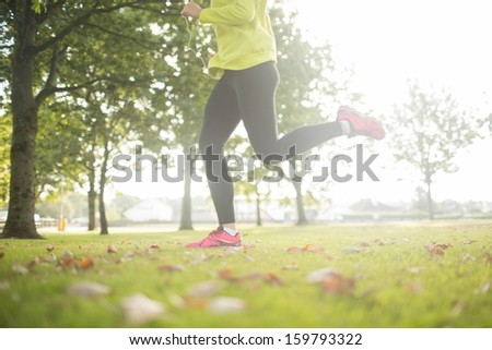 Active woman jogging in a park on a sunny day - stock photo