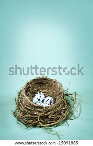 Actual Robin's nest photographed against a soft blue - stock photo