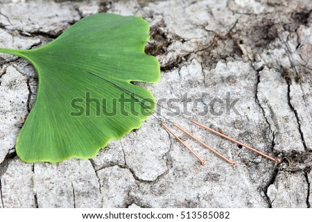 acupuncture needles and ginkgo leaf on a tree bark