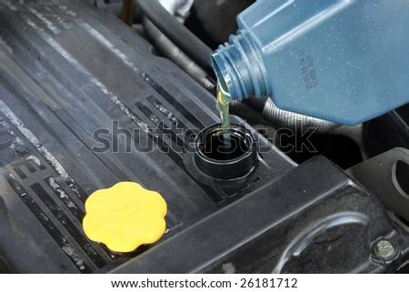 adding oil - stock photo