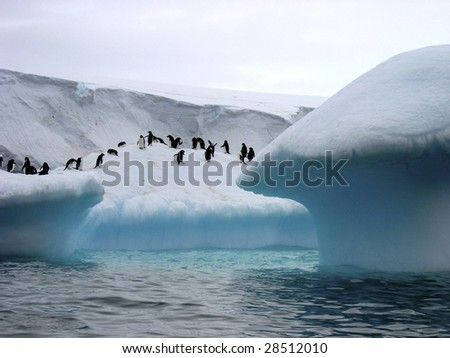 Adelie Penguins on Icebergs in Antarctica - stock photo