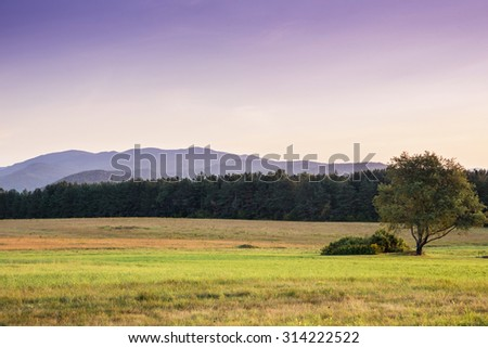Adirondack, High peaks mountains at sunset. Solitaire tree. Fall, nature, landscape, travel, expedition, adventure, outdoors, getaway a,d camping concept - stock photo