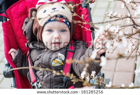 Adorable baby boy in a stroller in a blossoming tree spring time - stock photo