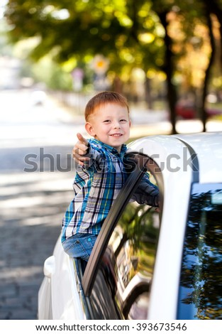 Adorable baby boy in the car