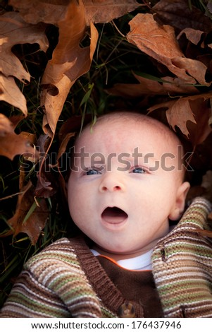 Adorable baby newborn boy surrounded by fall leaves with mouth open - stock photo