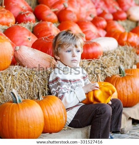 Adorable blond kid boy sitting with big pumpkins on patch farm, outdoors. Child having fun on sunny warm october day. Family celebrating thanksgiving or halloween.