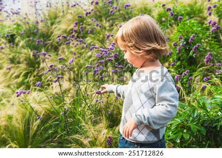 Adorable blond toddler boy playing in a garden, wearing grey pullover - stock photo
