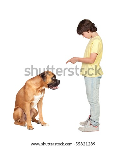 Adorable boy and his dog isolated on white background - stock photo