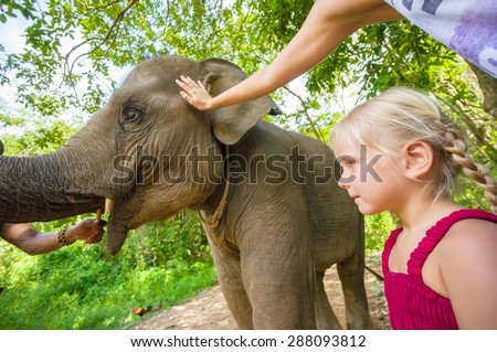 Adorable girl in red dress near baby elephant on farm in Thailand - stock photo