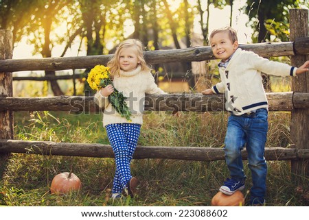 Adorable happy kids outdoors on sunny day