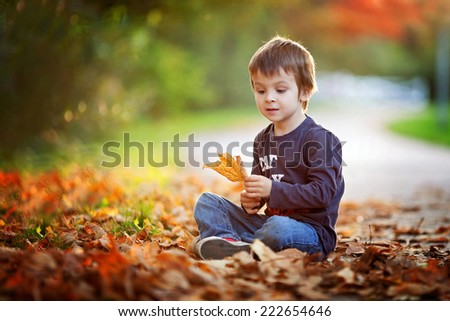 Adorable little boy with autumn leaves in the beauty park, sitting on the ground - stock photo