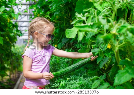 Adorable little girl collecting crop cucumbers in the greenhouse - stock photo