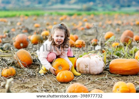 Adorable little girl of three years having fun with farming on a pumpkin patch. Traditional family festival with children, thanksgiving and halloween concept. Cute farmer.