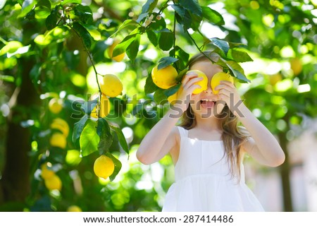Adorable little girl picking fresh ripe lemons in sunny lemon tree garden in Italy - stock photo