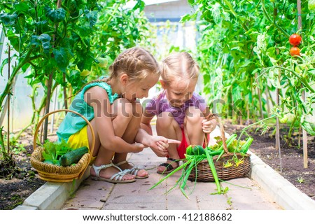 Adorable little girls collecting crop cucumbers and tomatoes in greenhouse - stock photo