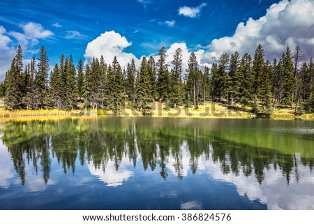 Adorable little lake. Coniferous forest is reflected in the mirrored water. Warm summer day in Jasper National Park in the Rocky Mountains