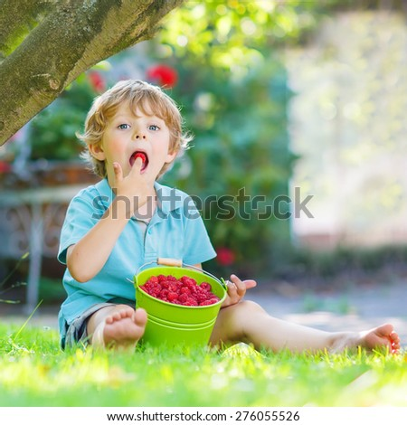Adorable little preschool boy eating raspberries in home's garden, outdoors. Sitting on ground with big buckets with berries. Healthy snack for children.