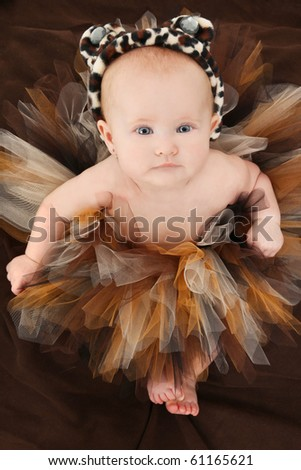 Adorable 4 month old baby girl in animal print tutu and hat over brown. - stock photo