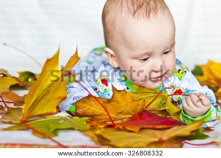 Adorable serious baby boy playing with autumn maple leaves - stock photo