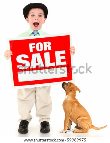 Adorable 3 year old american boy and boxer with red and white for sale sign.  Boy yelling out over white background. - stock photo