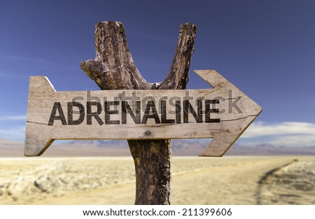 Adrenaline wooden sign with a desert background  - stock photo