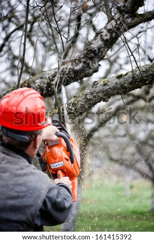 Adult cutting trees with chainsaw and tools - stock photo