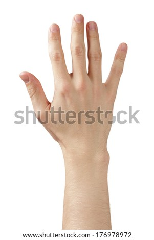 adult man hand showing five fingers, isolated on white