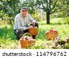 adult man sitting in the garden apple harvest - stock photo