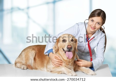 Adult. Vet holding a little puppy dog - isolated over a white background - stock photo