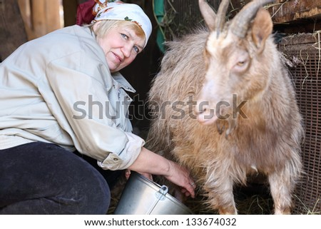 adult woman milking a goat