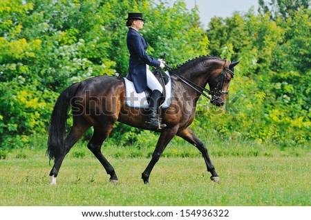 Advanced Dressage test: collected trot - stock photo