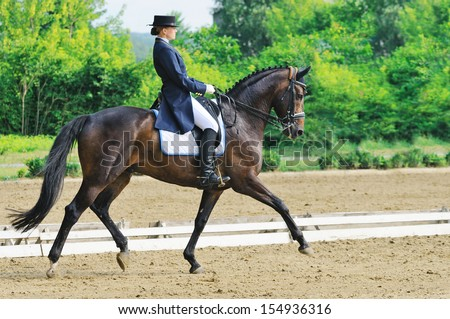 Advanced Dressage test: extended trot - stock photo