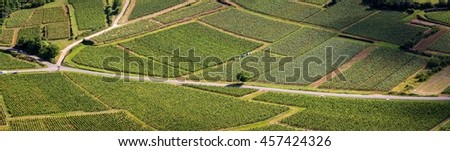 Aerial panoramic view of a road through vineyards, with the shadow of clouds
