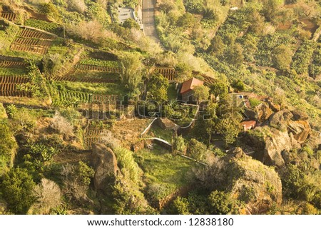 Aerial/top view of farm fields at Madeira, Portugal