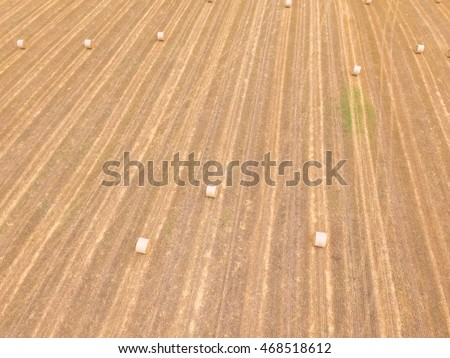 Aerial view bale hay on a corn farm after harvest in Austin, Texas, US. Golden rural landscape. Agriculture background. Hay used as animal fodder for grazing animals as cattle, horses, goats,  sheep.