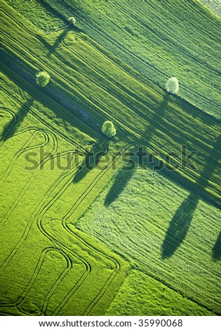 Aerial View : Four trees and their shadows in a field - stock photo