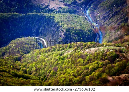 Aerial view of a forest and river - stock photo