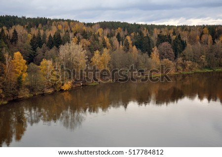 Aerial view of autumn forest and a river in cloudy weather.
