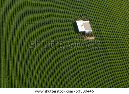 Aerial view of green carrot Field with a warehouse in it, Israel - stock photo
