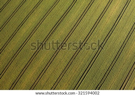 aerial view of green harvest field in Poland - stock photo