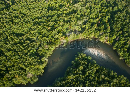 Aerial view of mangrove forest and river - stock photo