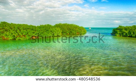 Aerial view of Mangroves and Ocean, Key West - Florida - USA.