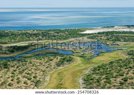 Aerial view of shallow coastal waters and forests of the tropical coast of Mozambique