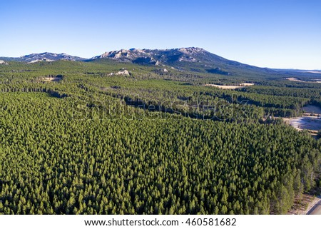 Aerial view of the Bighorn Mountains with a dense evergreen forest near Buffalo, Wyoming