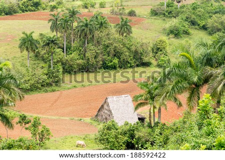 Aerial view with farming land of the Vinales Valley in Cuba, a place known worldwide for its beauty and the quality of its tobacco - stock photo