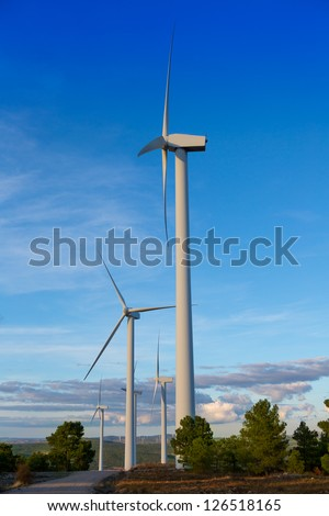 Aerogenerator windmills for green electric energy in pine mountain and blue sky
