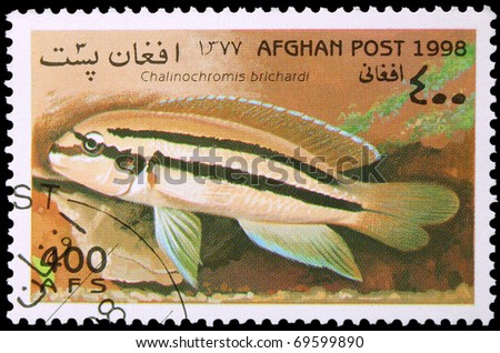 AFGHANISTAN - CIRCA 1998: A stamp printed in Afghanistan showing Chalinochromis brichardi, circa 1998
