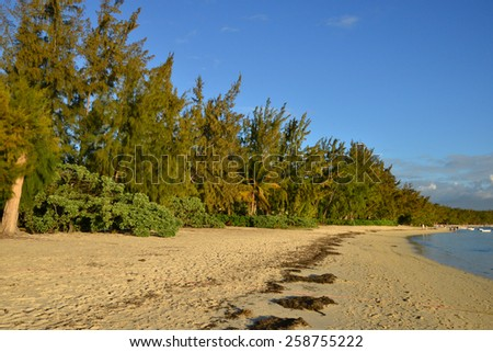 Africa, the picturesque area of la Pointe aux canonniers in Mauritius - stock photo