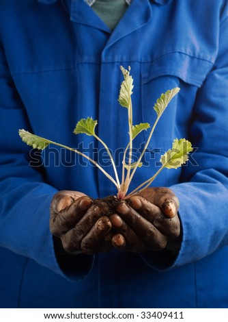 African American Farmer Holding New Plant in Hands - stock photo